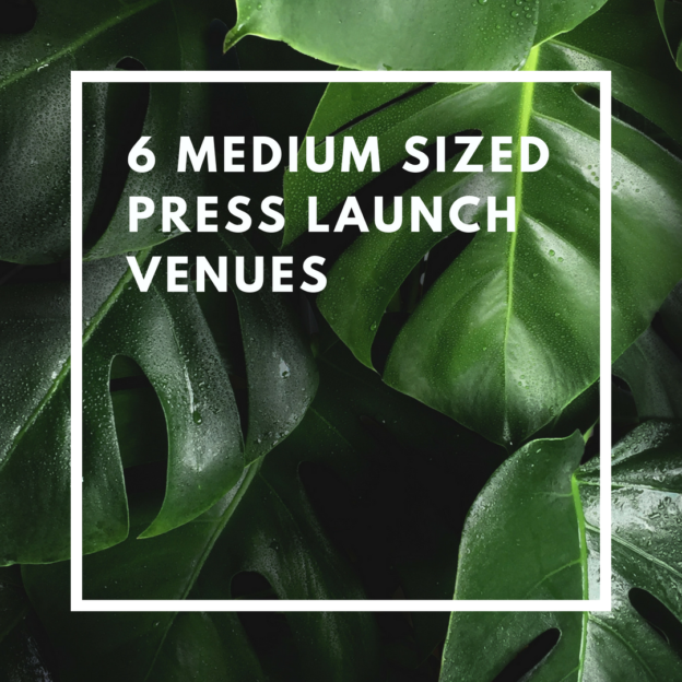 6 medium sized press launch venues