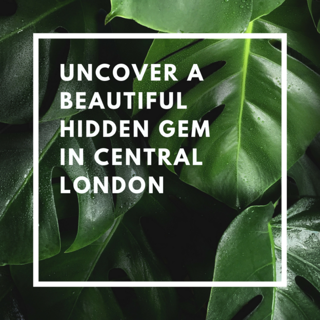 uncover a beautiful hidden gem in central london