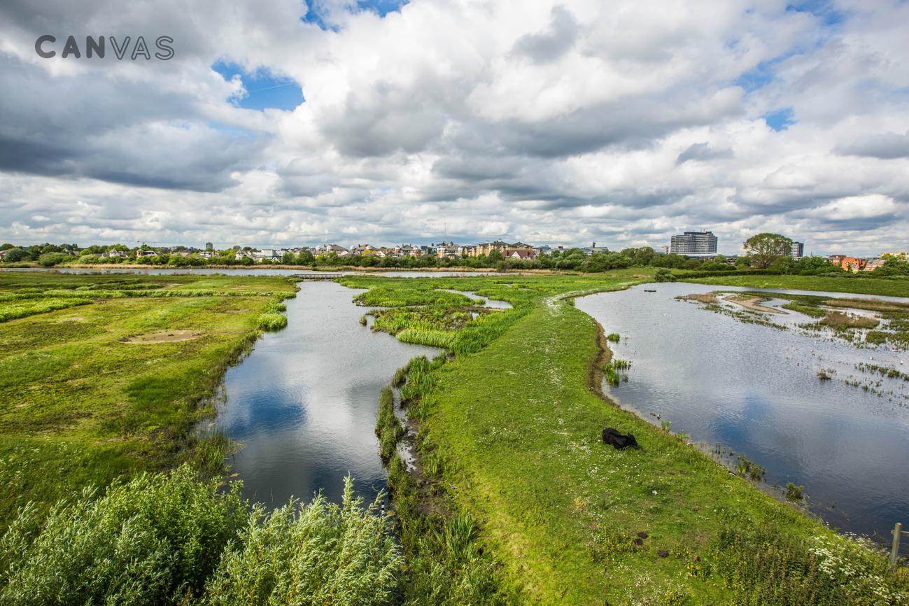 Wwt London Wetland Centre London Venue Hire Canvas Events