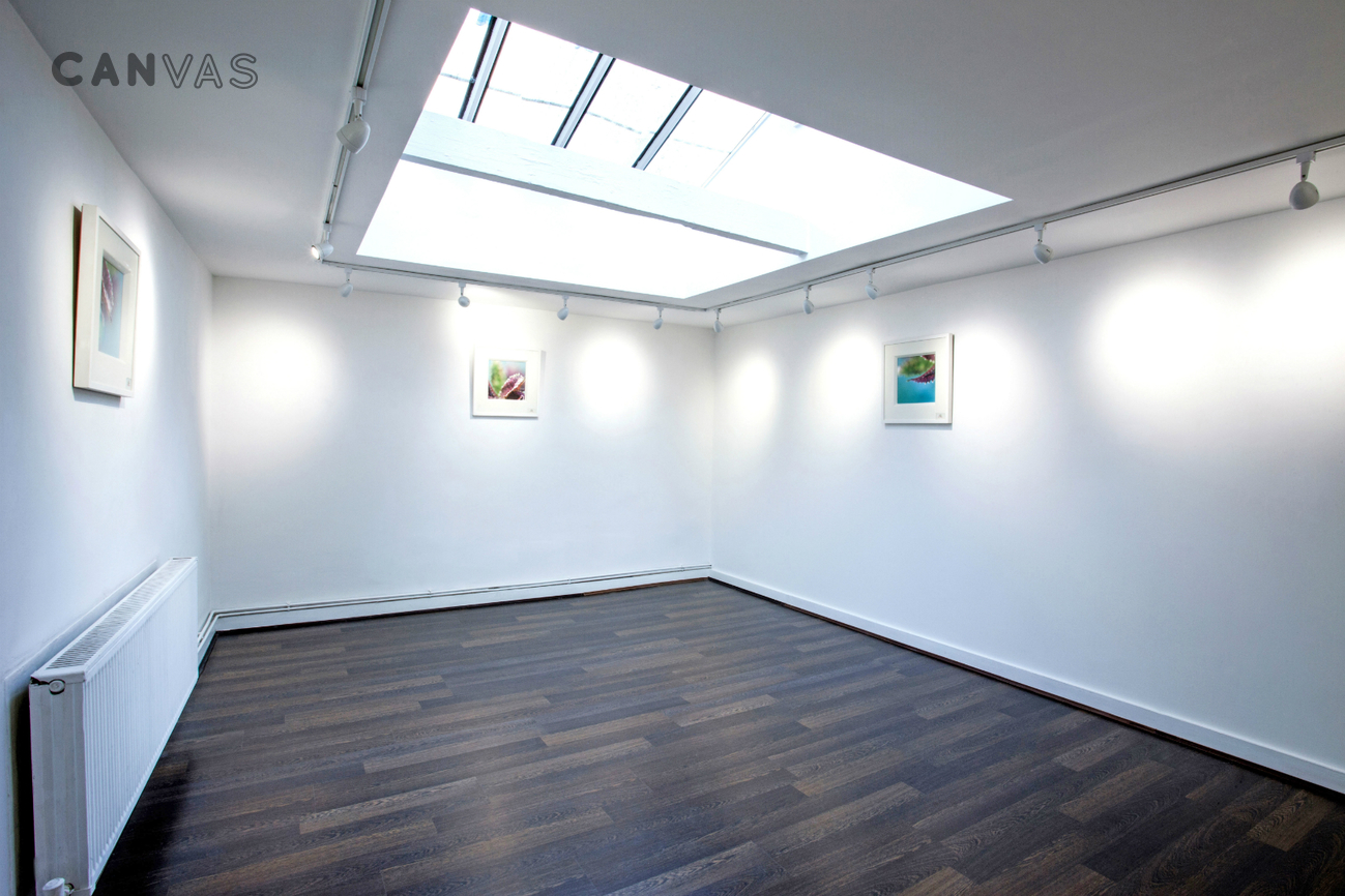 the framers gallery
